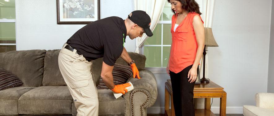 Vorheesville, NY carpet upholstery cleaning